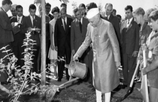 Nehru Planting a Sycamore in Belgrade 1961