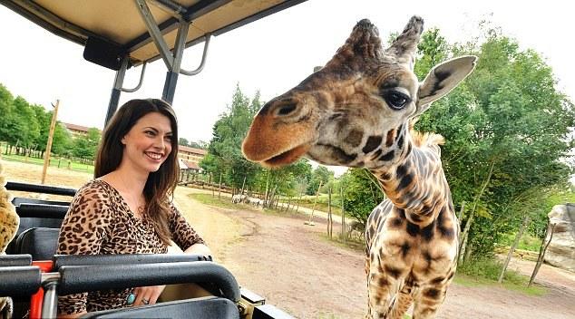 Šta raditi u Beogradu ove nedlje - Safari u Artgetu