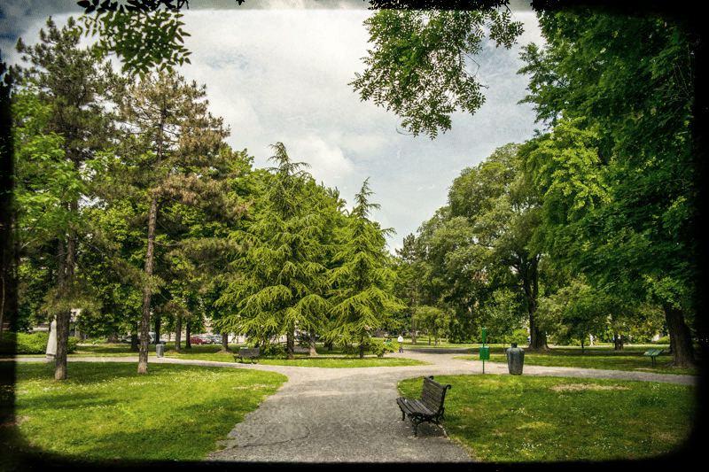 pionirski-park-staze-3