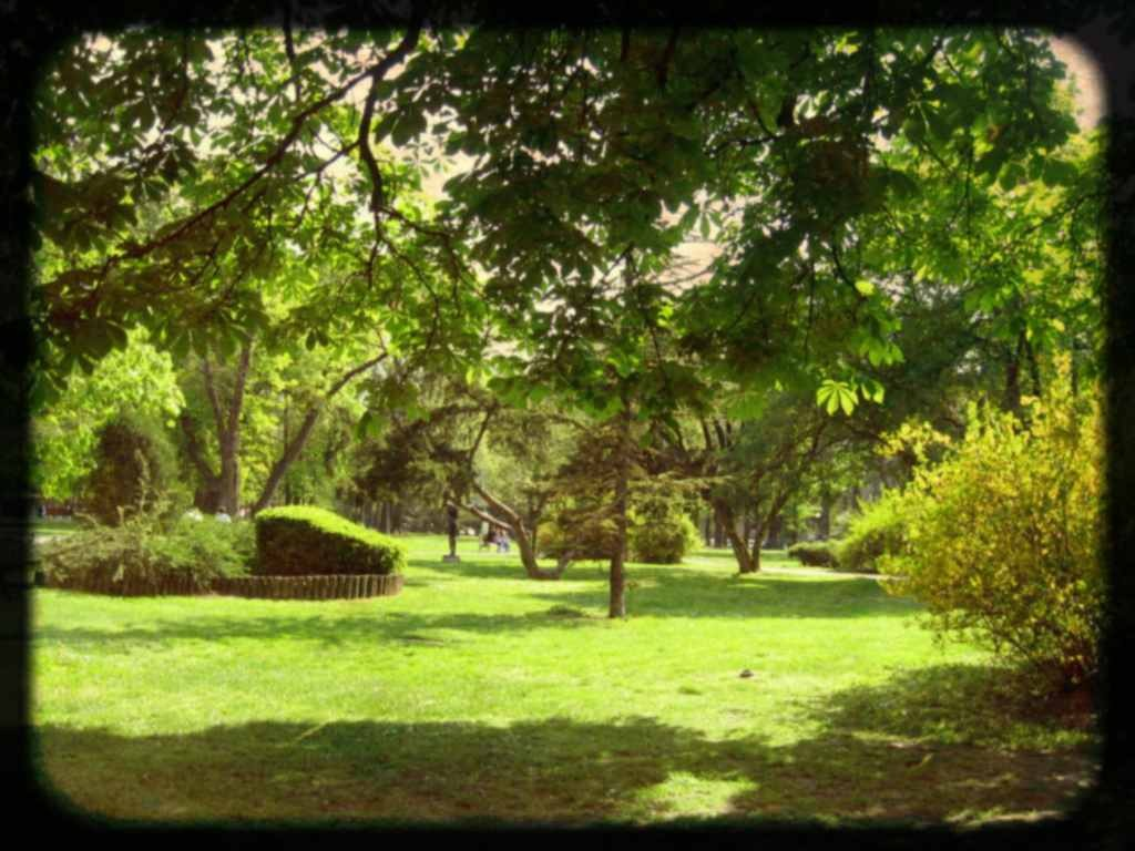 pioneer-park-belgrade