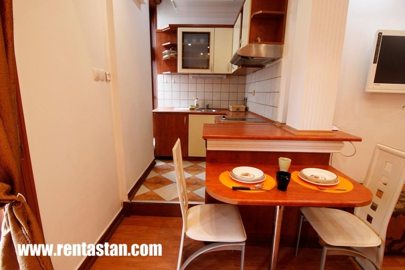 Apartment for a day near Republic Square - kitchen2