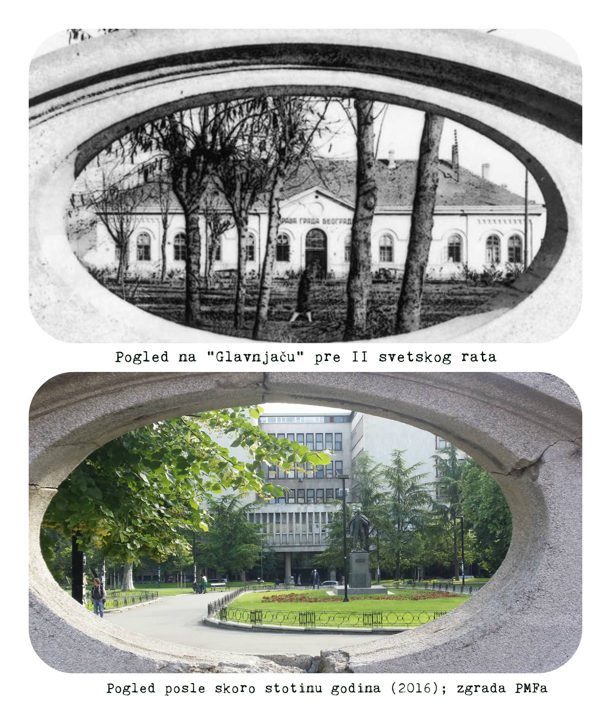 GLAVNJAČA KOLAŽ STUDENTSKI PARK