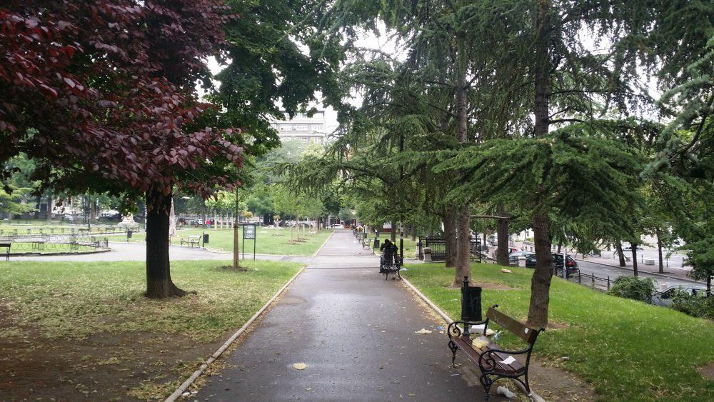 Students Park Belgrade Foliage