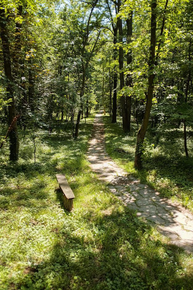 Lonely bench Hyde Park Belgrade