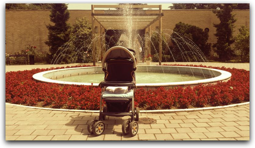 the-house-of-flowers-and-a-pram