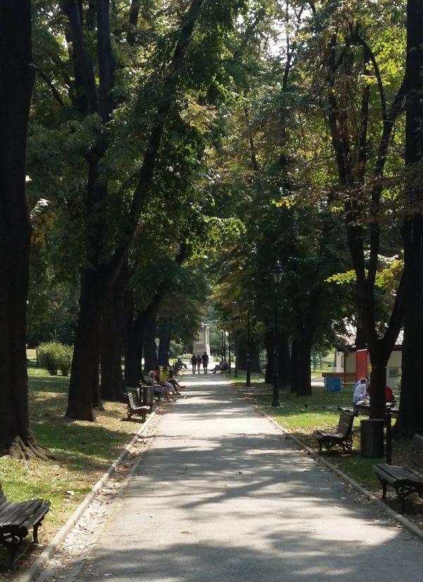 aleja-karadjordjev-park