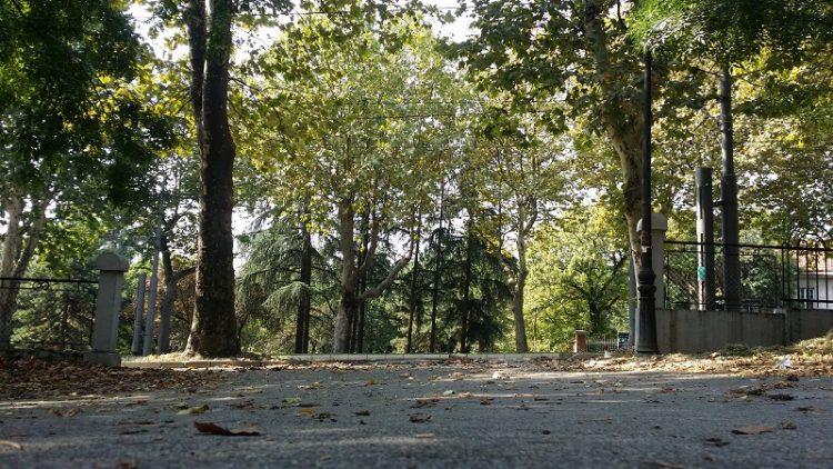 karadjordjev-park-ulaz-bulevar-oslobodjenja